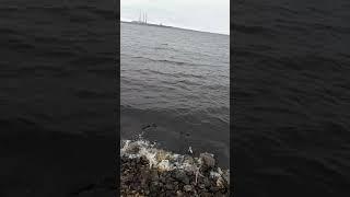 Рыбалка в марте на рефтинском водохранилище