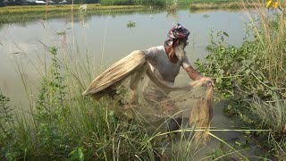 Net Fishing   Catching Lot of Fish By Cast Net   Fishing with beautiful nature (Part-63)