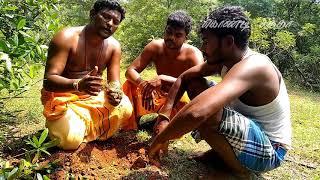 நிலம் புரண்டி, மண்ணில் மறையும் அதிசயம் (NILAM PURANDI)