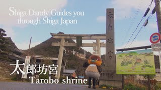 Tarobo shrine【Shiga Dandy Guides you through Shiga Japan】