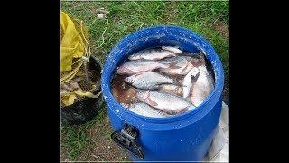 Рыбалка в володарском районе астраханской области форум