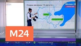 Какие погодные сюрпризы ждут москвичей в четверг - Москва 24