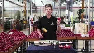 Tim Paine Kookaburra Cricket Bat Knocking In Video
