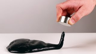 Amazing science experiments with magnets
