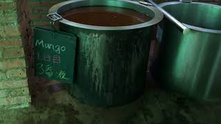 13種類のマンゴー
