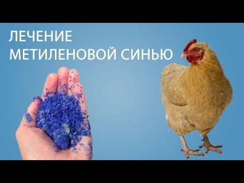 Средства от паразитов в организме человека лекарства