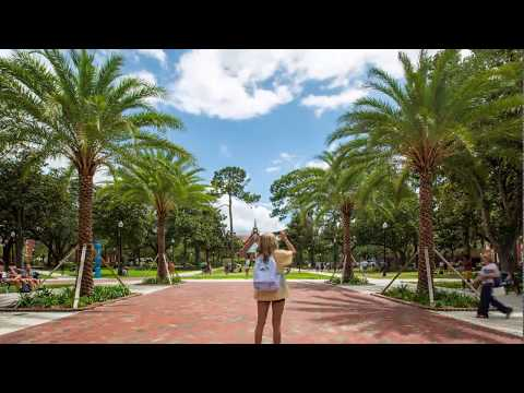 Timelapse: Plaza of the Americas at University of Florida
