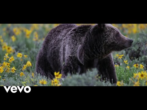 Mumford & Sons - Mumford & Sons and National Geographic Present: Beloved