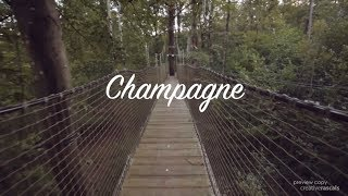 Champagne REEL - France tour | Cox & Kings