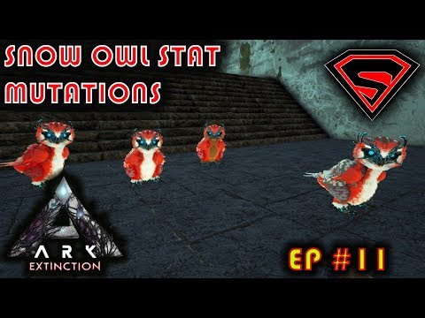 ARK EXTINCTION - BREEDING SUPER DINOS - SNOW OWL STAT MUTATIONS (PART 1) S4 EP11