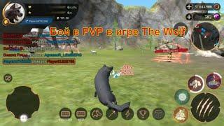 Бой в PVP в игре The Wolf 🐺 игра game можно смотреть мультфильмы онлайн мультики для детей