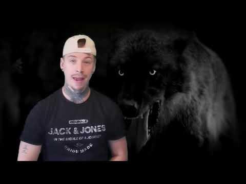 What Is A Werewolf?