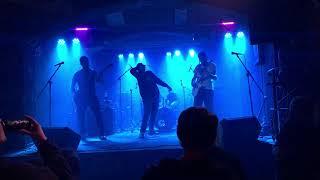 Video DGVM  -  Revizor live