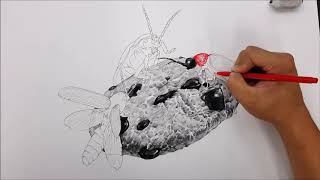 대박 국민대 실기대회장에 왠 벌레가?? 날이갈수록 진화되는 주제들.. 보고가자 반딧불이!
