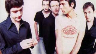 Suede - Dolly