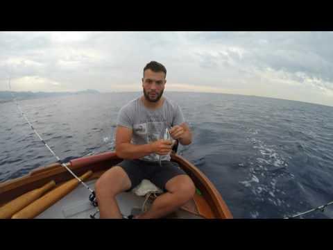 Spindoktor in pesca