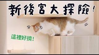 【黃阿瑪的後宮生活】新後宮大探險!