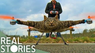 Would You Turn Your Cat Into A Drone? - Real Stories