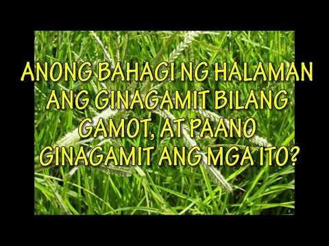 Mga alituntunin sa internasyonal na mga pamantayan para sa paggamot ng kuko halamang-singaw