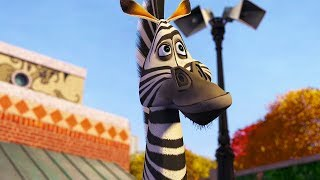 DreamWorks Madagascar   Marty's Best Moments   Madagascar Funny Scenes   Kids Movies   Kids Videos