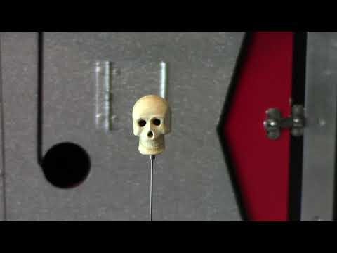 Talking Skull (Early) by Anverdi