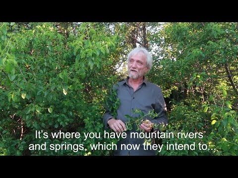 Video: Darko Rundek for Balkan Rivers