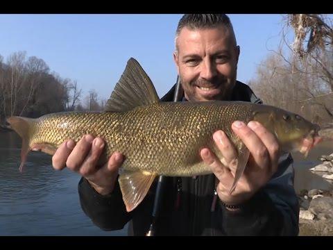 In totale su pesca di video sul fiume