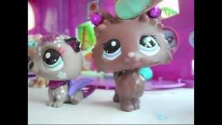 Littlest Pet Shop ♛ Magnumin Synttärit ♛