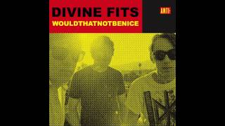 "Divine Fits - ""Would That Not Be Nice"" (RJD2 Remix)"