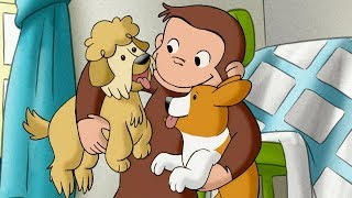 Curious George  1 Hour Compilation  HD  Cartoons For Children