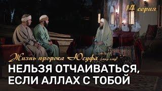 Не отчаивайся в милости Аллаха | История Юсуфа (мир ему) [14-20]