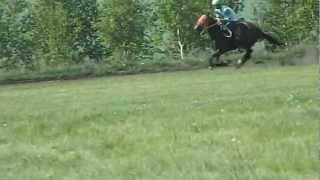 Падение с лошади на скачках. (Сабантуй 2012)