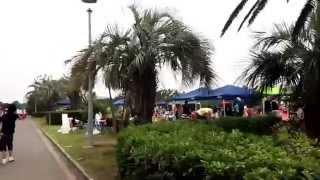 ふなばし三番瀬海浜公園のイメージ