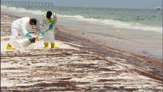 6 Years After the BP Disaster, Life is Anything But Normal