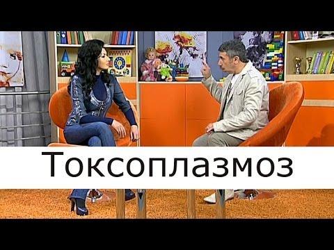 Токсоплазмоз - Школа доктора Комаровского