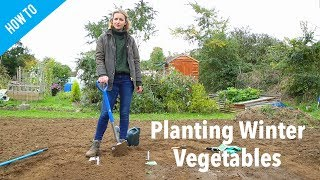 How To Plant Winter Vegetables