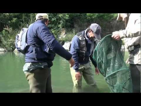 La pasta per pescare da farina video