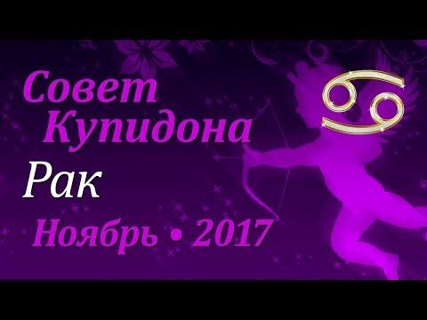 Гороскоп на год дракона по знакам зодиака и