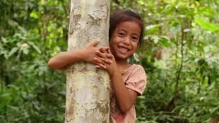 Dia da Árvore. Homenagens aos que colaboram com o meio ambiente