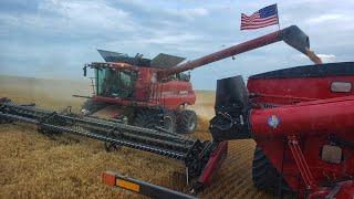 Millennial Farmer STOLE Welker's Case Combine (Optimus Bine!!)