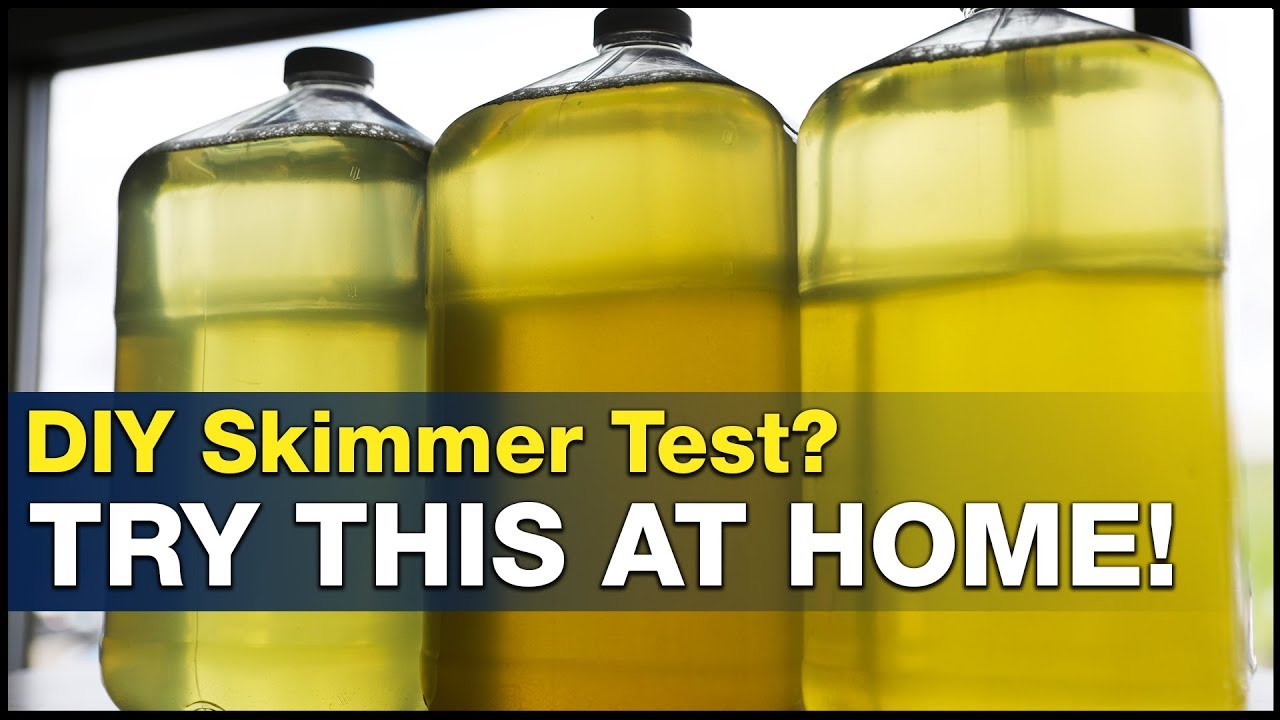 DIY protein skimmer test you can do at home! Dry vs. Wet skimming? | BRStv Investigates