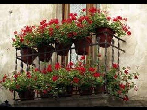 Балконы. Французские балконы. Применение.