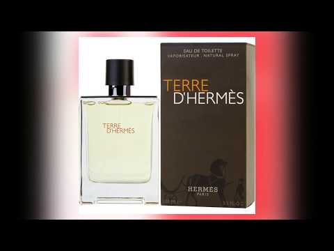 woody fragrances – Woody notes in perfumes