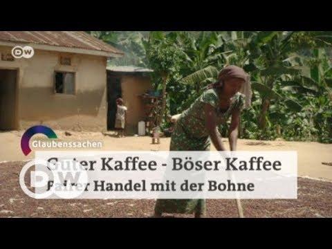 Guter Kaffee, Böser Kaffee - Fairer Handel mit der Bohne | DW Deutsch