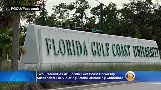Two Fraternities Suspended For Violating Social Distancing Guidelines At Florida Gulf Coast Universi