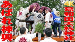 7月の臨時休業のお知らせ!!!