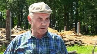 В Пермском крае уничтожают лучший конезавод страны