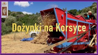 Część 3 Un Grane Anticu (Korsyka 2019 Artur Lalak Grzegorz Skwarek)