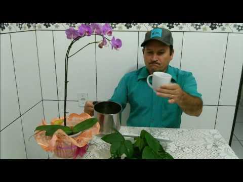 Come eccitare prostata di un uomo