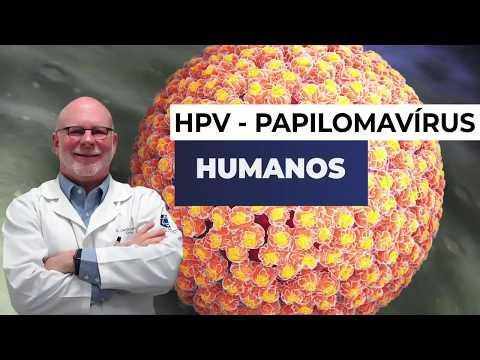 Papillomavírus luette
